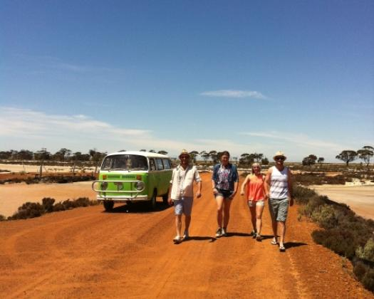 Exploring the  Pathways to Wave Rock