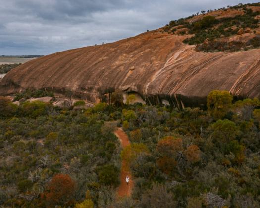 Exploring the Pathways to Wave Rock, Kokerbin Rock