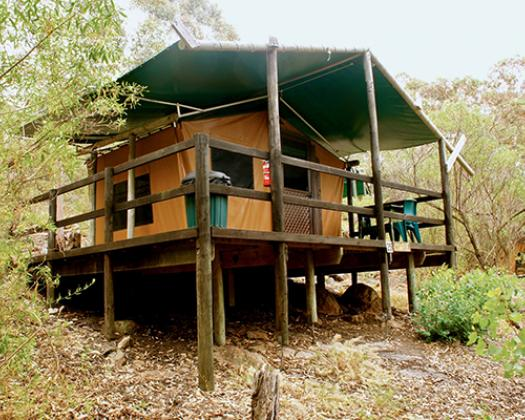 Woody Island Ecotours Accommodation safari tent